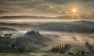 Tuscan Morning